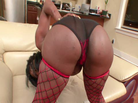 Watch Phat Black Ass Worship 2 (Adult Entertainment Broadcast Network) XXX Porn Tube Videos Gifs And Free HD Sex Movies Photos Online