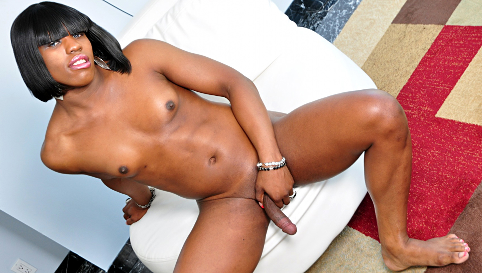 Watch Black Shemale Idol – The Auditions #02 (I Love Black Shemales) XXX Porn Tube Videos Gifs And Free HD Sex Movies Photos Online