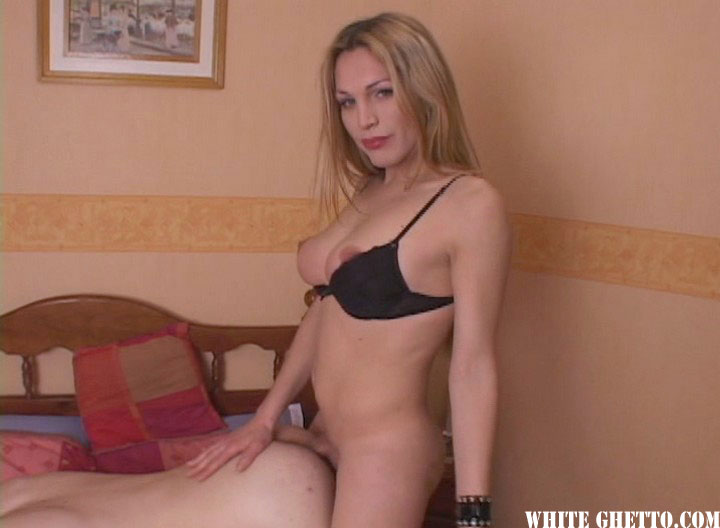 Watch Transsexual Road Trip (White Ghetto) XXX Porn Tube Videos Gifs And Free HD Sex Movies Photos Online