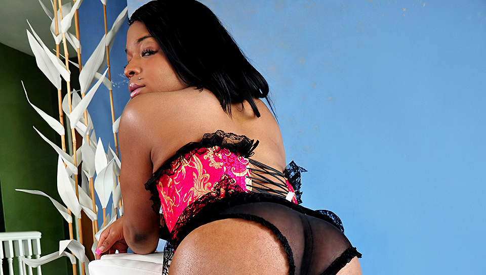 Watch Black Shemale Idol – The Auditions (Shemale Idol) XXX Porn Tube Videos Gifs And Free HD Sex Movies Photos Online